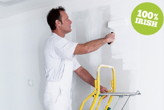 Painter and Decorator Dublin